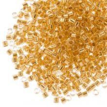 Miyuki Delica (11/0 mm) 24kt Gold Lined Crystal (10 Grams)