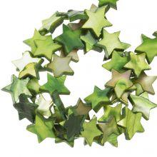 Shell Beads Star (11 mm) Green (38 pcs)