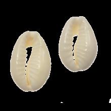 Cowrie Shell Beads (18 - 20 mm) Seashell (21 pcs)