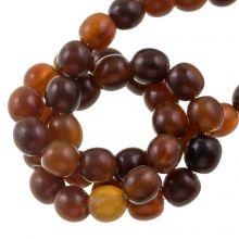 Bone Beads (8 mm) Golden (55 pcs)