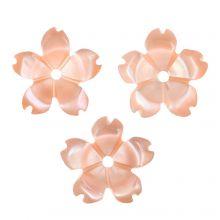 Shell Charm (10 x 10 x 2 mm) Salmon Pink (3 pcs)