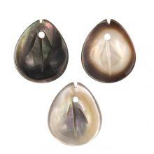Shell Charm (12 x 10 x 2.5 mm) Black Lip Shell (3 pcs)