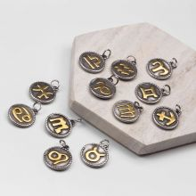 Charms Zodiac Sign Stainless Steel (18 x 3 mm) Antique Silver (12 pcs)