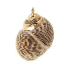 Shell Charm (25 - 30 x 18 - 24 mm) Electroplated Brown (3 pcs)