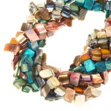 Bead Kit - Shell Beads (8 x 8 mm) Mix Color (235 pcs)