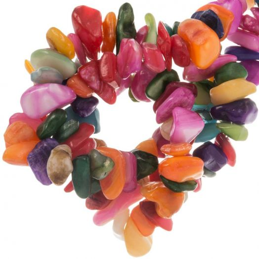 Shell Beads (8 x 5 mm) Mix Color (220 pcs)