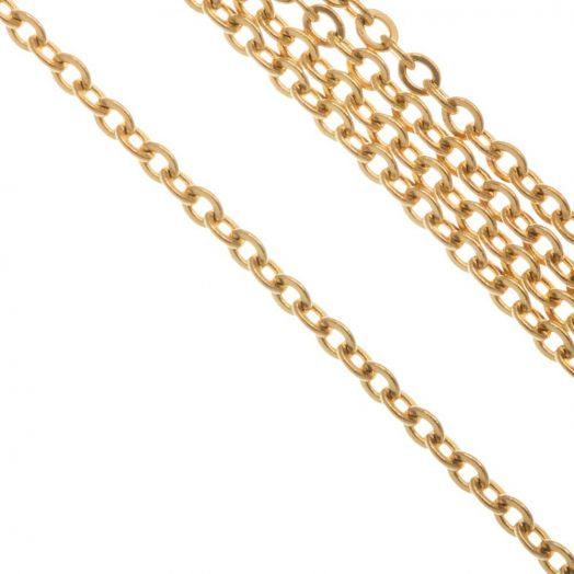 Stainless Steel Rolo Chain (2.5 x 2 x 0.5 mm) Gold (10 Meter)